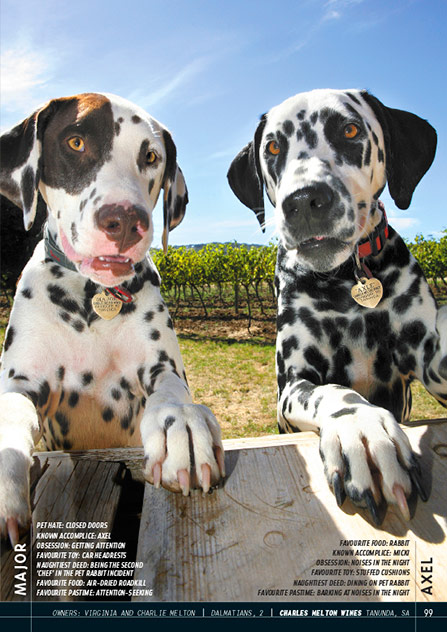 Wine Dogs Australia