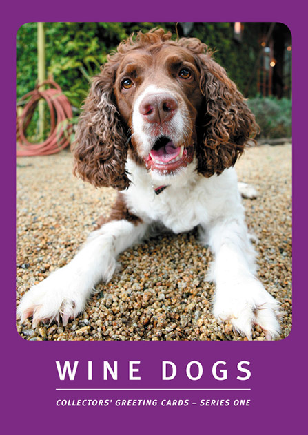 Wine Dogs Greeting Cards